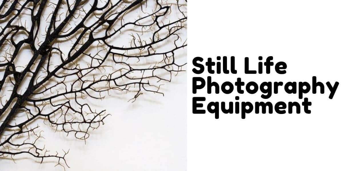 Still Life photography equip